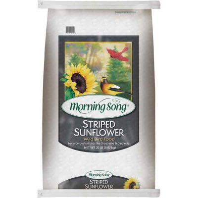 Morning Song 20 Lb. Striped Sunflower Wild Bird Seed
